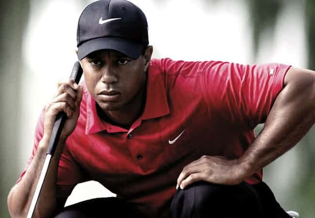 Player Profile - Tiger Woods