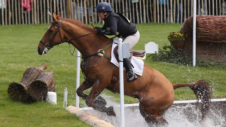 Equestrian (Horse Riding) Game: Facts, History, Rules