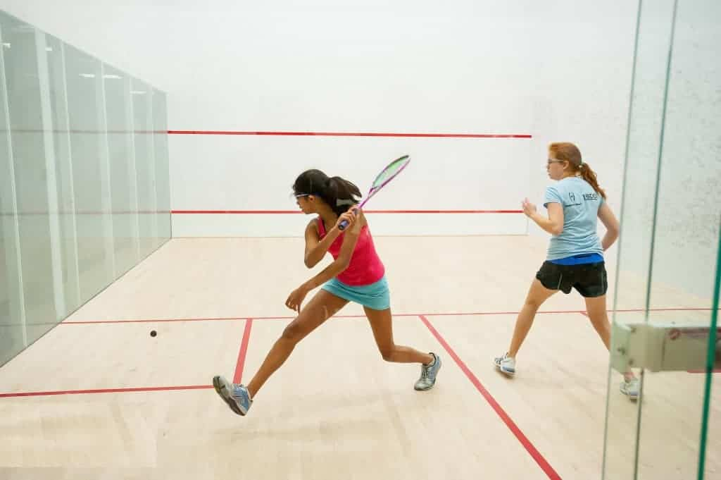 14 Important Facts about Squash
