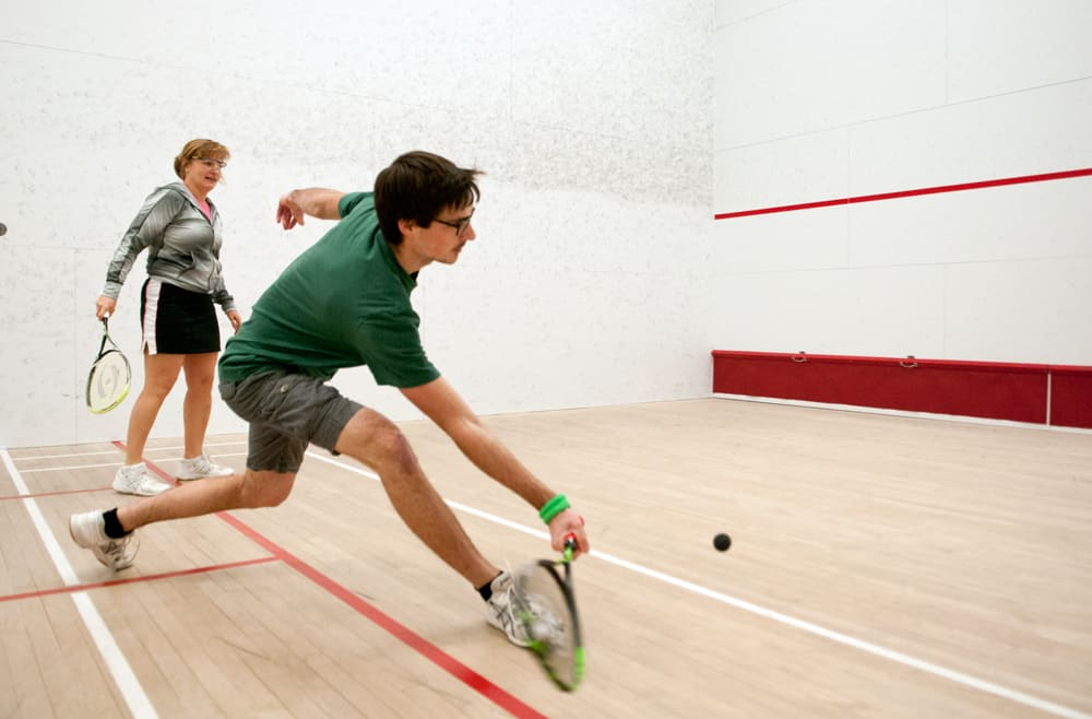 Everything you want to know about Squash