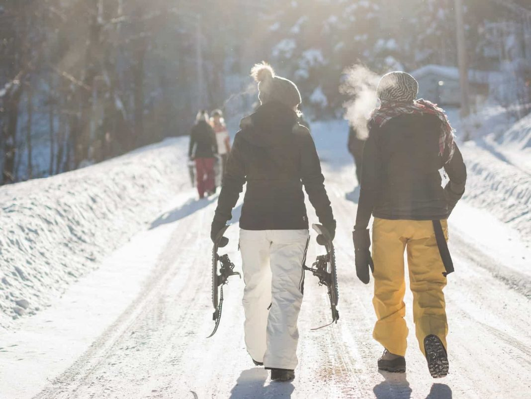 Freestyling and Alpine Shredding—Different Types of Skiing Explained
