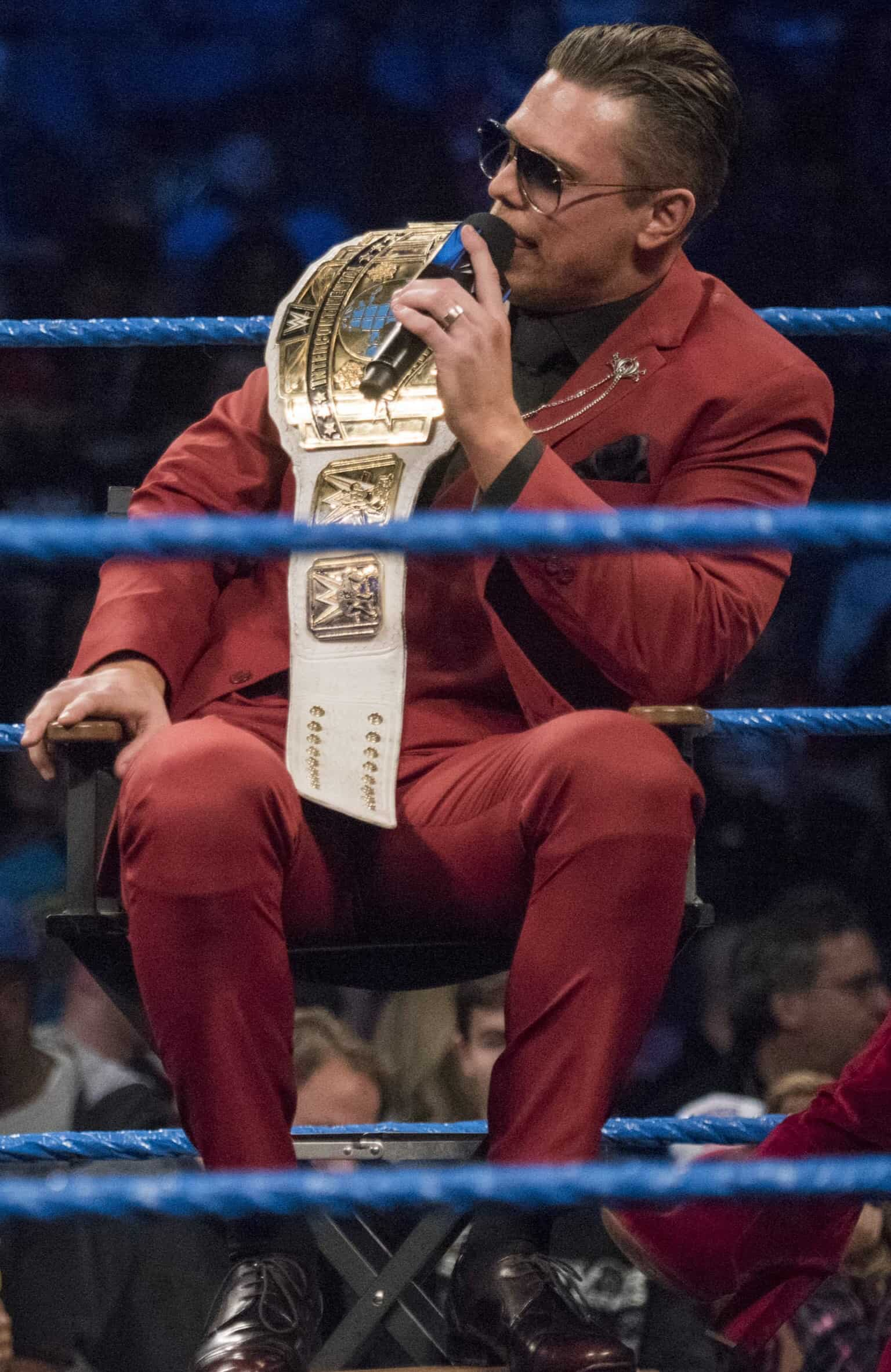 Professional Wrestlers Who are in The Prime of Their Career